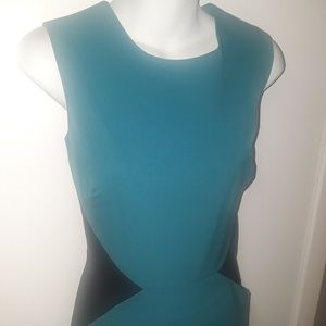 Calvin Klein Sz 8 Dress